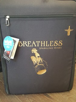 Wine Check Suitcase